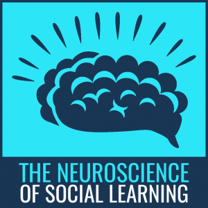 neuroscience of social learning