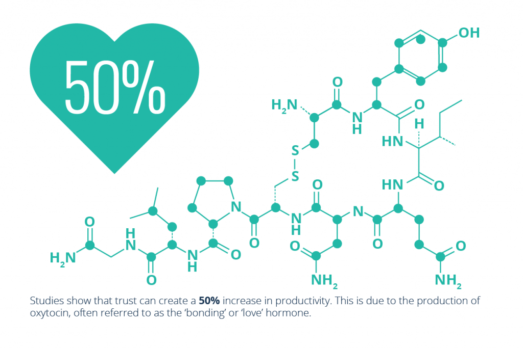 A heart with 50% in it and the diagram of oxytocin to the side. Beneath this it says the stat about the 'love hormone' in the article