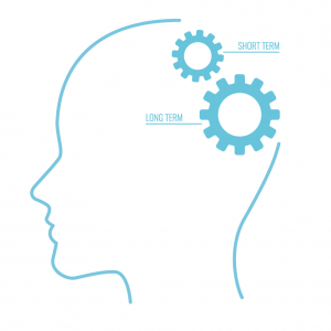 Learning Theories: Cognitivism