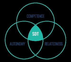SDT diagram